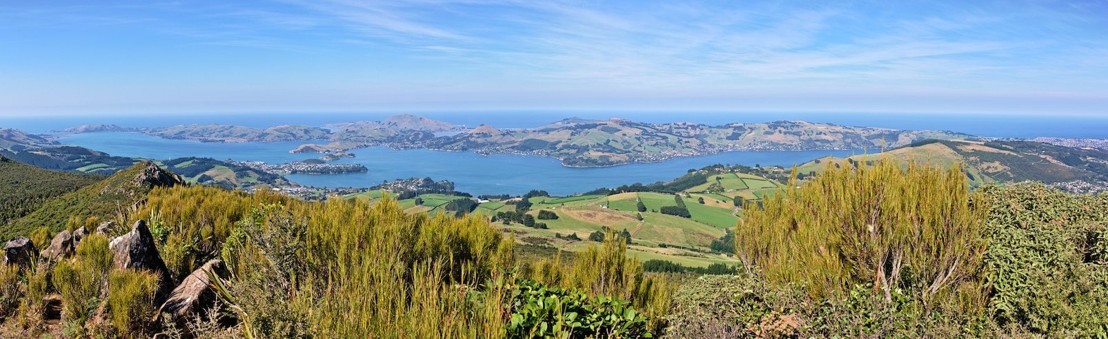 Coworking hubs, shared and serviced offices available in Dunedin